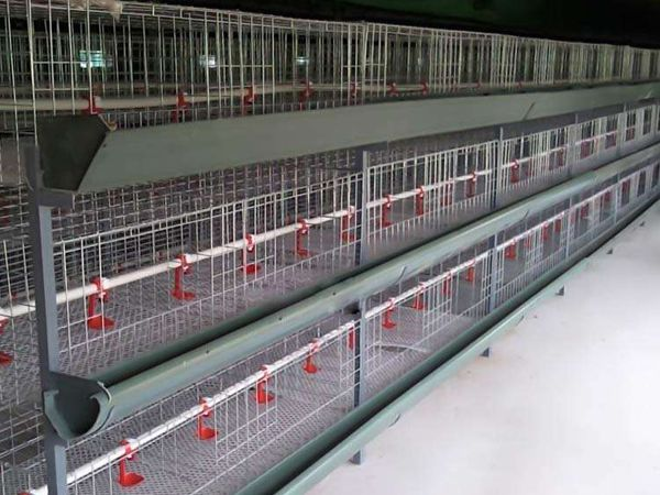 层叠式肉鸡养殖笼
